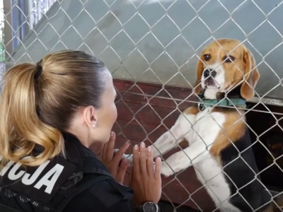 """Policjantki i policjanci"": Nie kupuj, adoptuj! (wideo)"