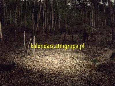 PREMIERA kalendarza ATM Grupy na 2021 rok!
